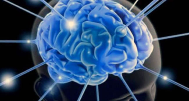 Niveles Neurologicos PNL – Los Niveles Logicos de Robert Dilts PNL